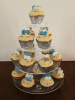 blue_ivory_cup_cakes_birthday.JPG